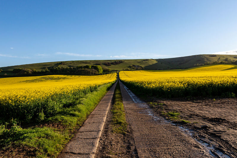 Dirt road passing through field against clear sky