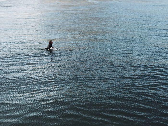 Surf Surfing Ocean Sports Photography Serenity Blue Sea Blue Eyeemphotography EyeEm Best Shots