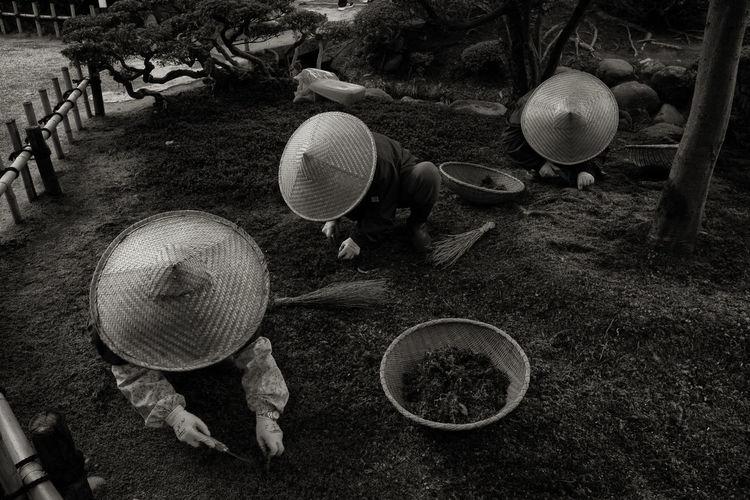 People working in garden
