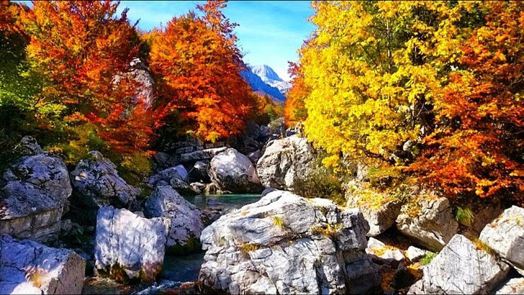 Colorful Enjoying Life Wonderful Albania Coloursofalbania First Eyeem Photo