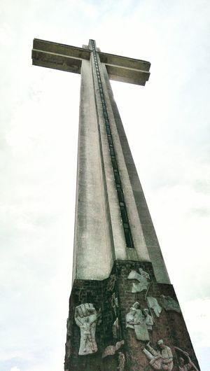 d' Cross