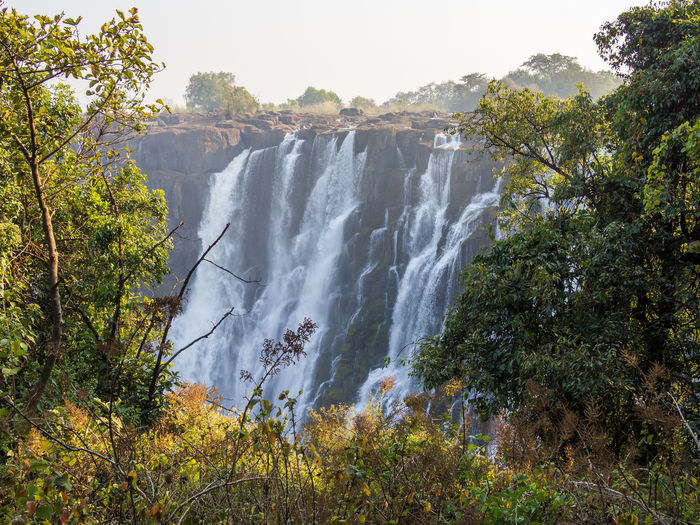Scenic view of victoria falls in forest against clear sky