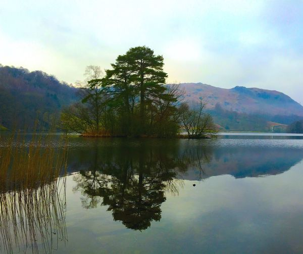 Reflections on a lake near Ambleside Mountain Reflection Nature Scenics Tranquility Beauty In Nature Mountain Range Lake Tranquil Scene Sky Tree Water Waterfront Idyllic Outdoors Day Landscape No People Non-urban Scene Growth