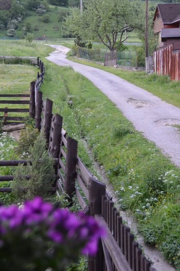 Countryside Eye4photography  Fence Frlower From My Point Of View Grass Green Color Nikon No People On The Way Outdoors Pathway Purist In Photography Road Slovakia The Purist (no Edit, No Filter) The Way Forward Tranquility Village Walkway čičmany