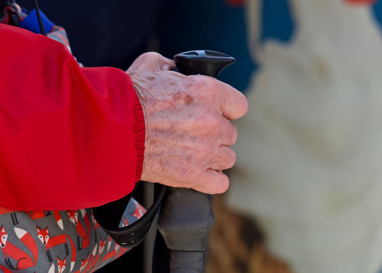 Cropped hand of person holding walking stick