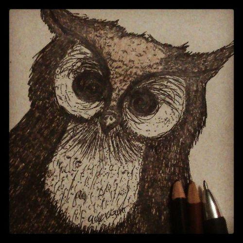Owl Draw Ink Colordraw inkdraw drawing drawart dibujo búho animadraw