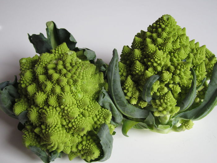 High angle view of romanesco broccoli on white background