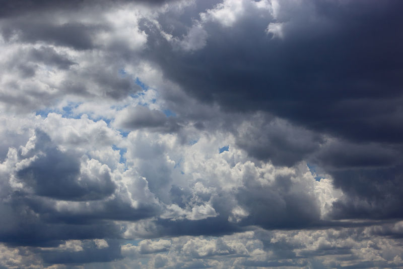 clouds in the sky, rain clouds, low pressure area Dark Clouds Backgrounds Beauty In Nature Cloud - Sky Cloudscape Day Dramatic Sky Fluffy Low Pressure Area Meteorology Moody Sky Nature No People Ominous Outdoors Overcast Rain Clouds Scenics - Nature Sky Storm Storm Cloud Thunderstorm Tranquility Wind