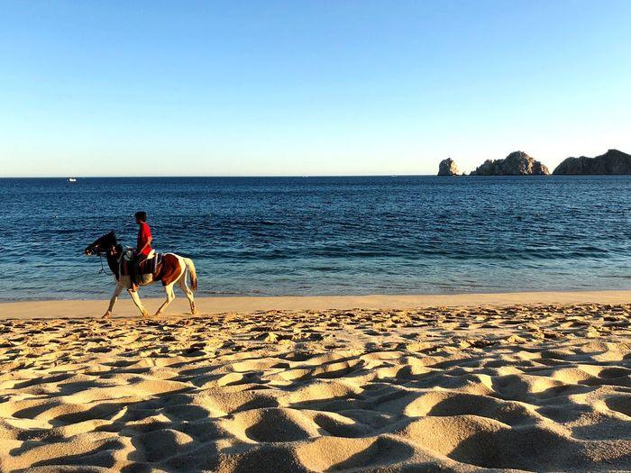 Man horseback riding on sand against sea at beach