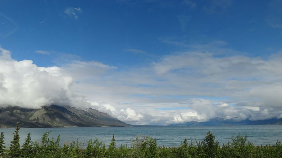 Beauty In Nature Blue Canada Cloud - Sky Day Horizon Over Water Kluane Lake Kluane National Park & Reserve Nature No People Outdoors Scenics Sky Tranquil Scene Tranquility Tree Water Yukon