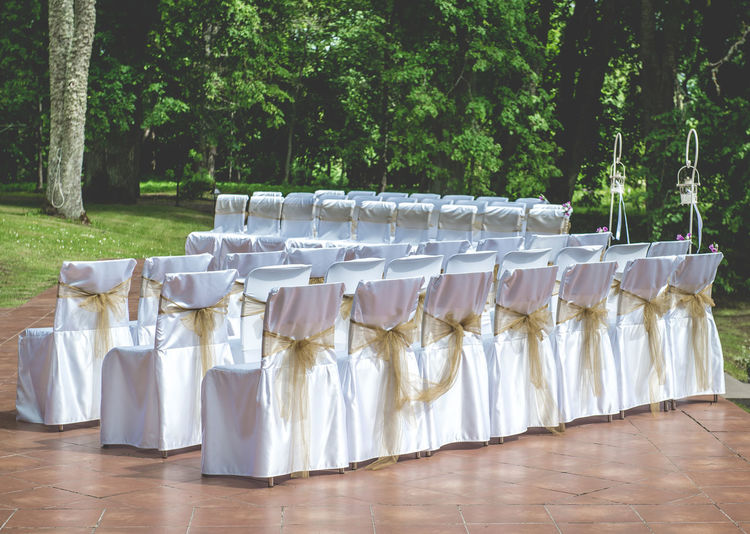White wedding chairs with brown bows outdoors Bow Chair Elegant Empty Chairs Engagement In A Row Objects Ribbon Romantic Summertime Wedding Wedding Reception Beauty Celebration Event Covers Day Decoration Idyllic Marriage  No People Outdoors Preparation  Wedding Ceremony Wedding Chairs White And Beige