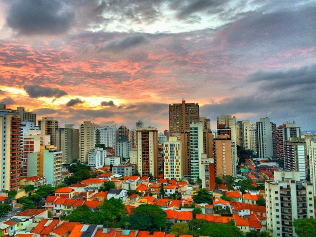SAO PAULO BRAZIL Architecture Building Exterior Built Structure City Cityscape Cloud - Sky Day Growth Modern Nature No People Orange Color Outdoors Sky Skyscraper Travel Destinations Tree