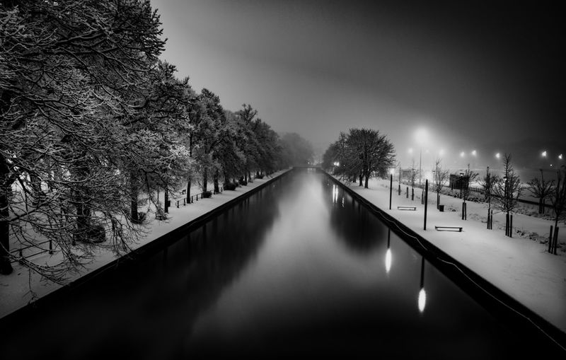 Noir Et Blanc BW_photography Bw Bw Tree Water Plant Illuminated Nature Reflection Sky Architecture Night Scenics - Nature Outdoors Canal No People