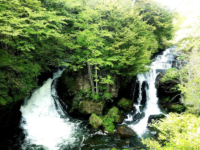 Nature Waterfall Water_collection 龍頭の滝