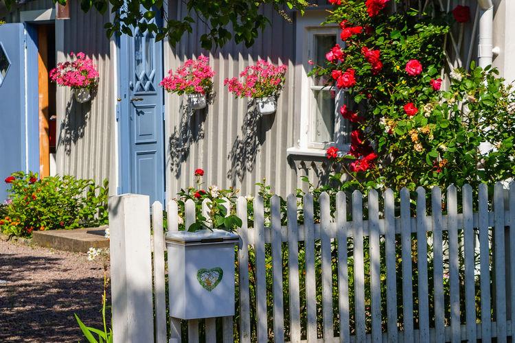 Flower pot by railing against building