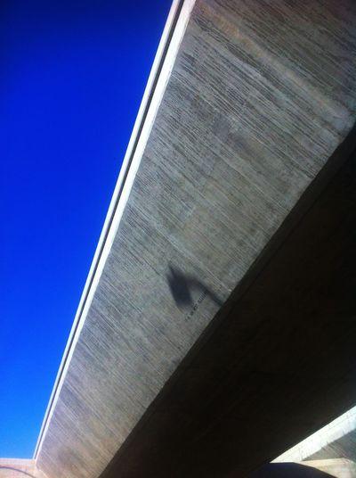 Losangeles L.A. DTLA Flyover Sky