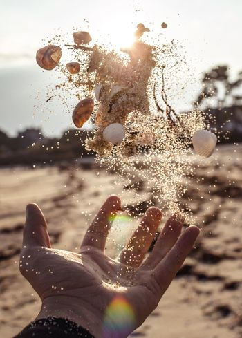 Power in your hand Vacations Nature Flying Flying Over Your Imagination Levitation Levitate Beach Bretagne Trip France Shell Shells Artistic Shell Art Beachphotography Beach Photography Beach Art Capture The Moment Capturing Movement Capture