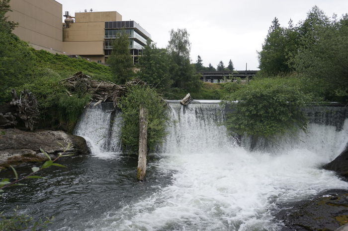 Tumwater Falls Architecture Beauty In Nature Building Built Structure Canal City Day Flowing Flowing Water Green Color Growth Motion Nature No People Outdoors Plant Rippled Scenics Sky Travel Destinations Tree Water
