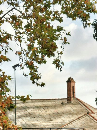 """""""Roof, little bell, and security camera"""". @ Genova Walking Around IN THE STREETS / Point And Shoot camera and a bit of Snapseed Editing  Autumn Leaves Trees And Sky Sky And Clouds"""