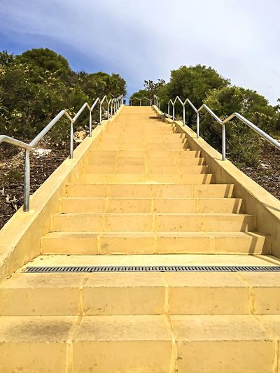 Up, Up, Up to Infinity Muscle Inner Strength Healthy Lifestyle Lifestyle Health And Wellness Torture Healthy Pain RePicture Growth Motivation Fitness Training Training Fitness Steps Steps Staircase Alternative Exercise Alternative Exercise Fitness Stairs Stairs In Nature Stairways Stairs Fitness Sky Trees