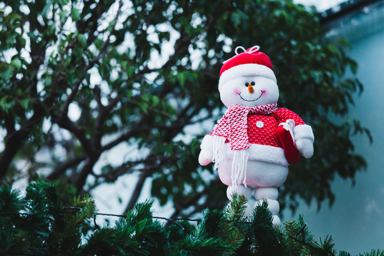 Snowman hanging from tree