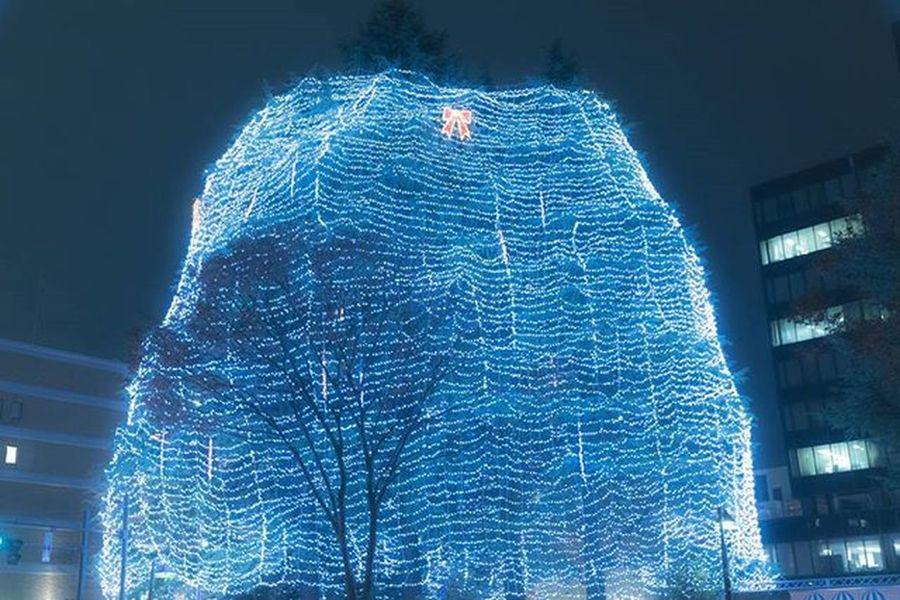 光のページェント 仙台 イルミネーション 風景