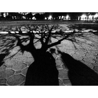 """ Talk ... Say Something "" a Girl Try to Live in the Dark Black Life Lifeanddeath Silhouette Freedom Dream Imagination Blackandwhite Perempuan Bicara pada Bayang Malam Gelap Kehidupan Kebebasan Imajinasi Titik_tiga Lenovotography photooftheday photophone lzybstrd pocketphotography"