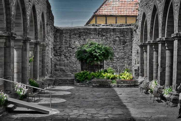 Potted plants against old building