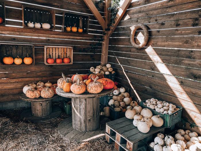 View of pumpkins on wood