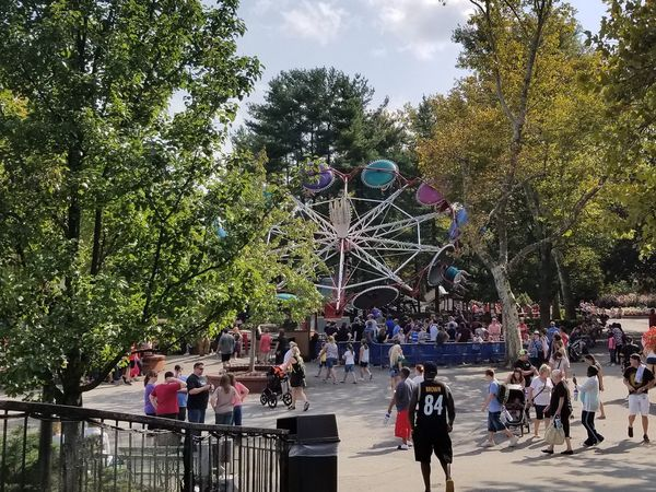 Tree Large Group Of People People Leisure Activity Day Real People Outdoors Nature Amusement Park Ride West Mifflin Pennsylvania Amusement Park Kennywood Paratrooper Ride View From Bridge A New Perspective On Life