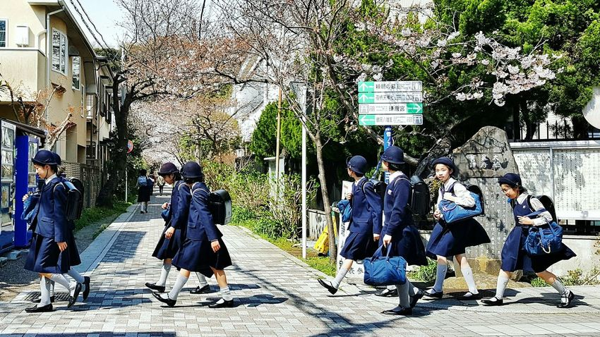 Afternoon Special: paikura JAPAN Real People Walking Sunlight Outdoors Lifestyles Travel Eye4photography  AMPt_community EyeEm Best Shots Japan Cherry Blossoms The Street Photographer - 2017 EyeEm Awards