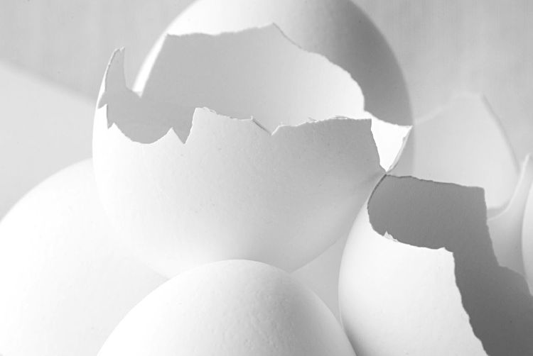Egg shells Pattern Pieces EyeEm Best Shots Focus Objects EyeEm Selects Egg Broken Indoors  Eggshell No People Close-up White Color Shadow Cracked Food And Drink Food Damaged Freshness Fragility Shell EyeEmNewHere EyeEmNewHere EyeEmNewHere EyeEmNewHere The Still Life Photographer - 2018 EyeEm Awards The Creative - 2018 EyeEm Awards