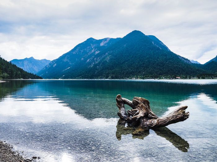 Driftwood On Lake By Mountain Against Sky