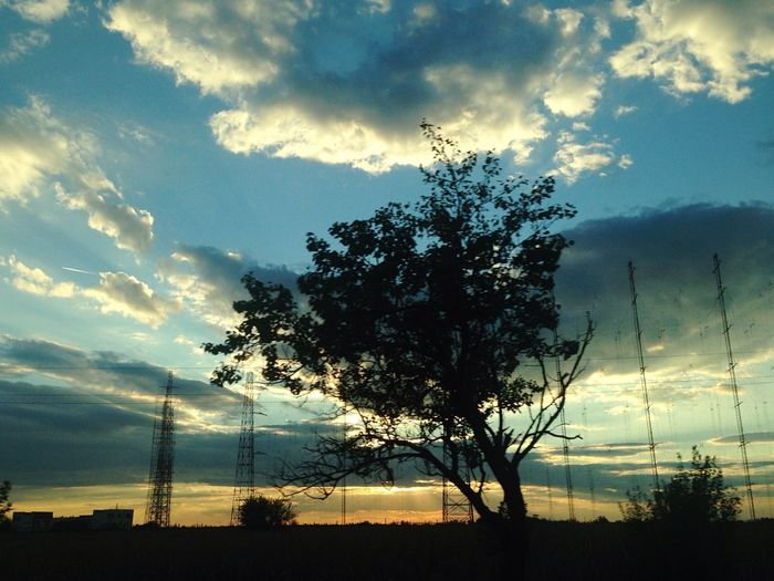 Sunset_collection Landscape EyeEm Nature Lover Cloudscape Majestic In Love With Nature Magic Moments Beautiful Tree
