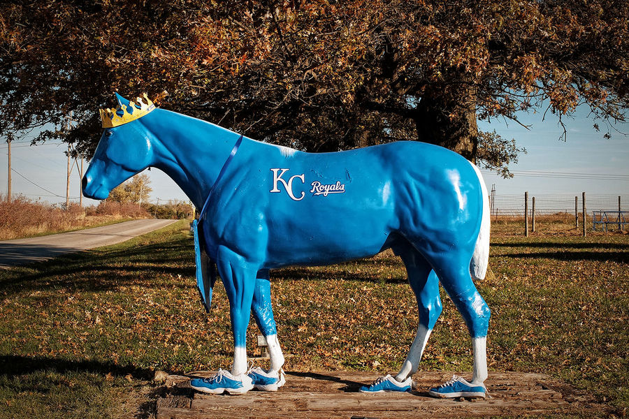ROYAL BLUE ~ Smithville, Missouri ~ It Was Only A Dream Wild Horses Autumn Leaves Roadside America