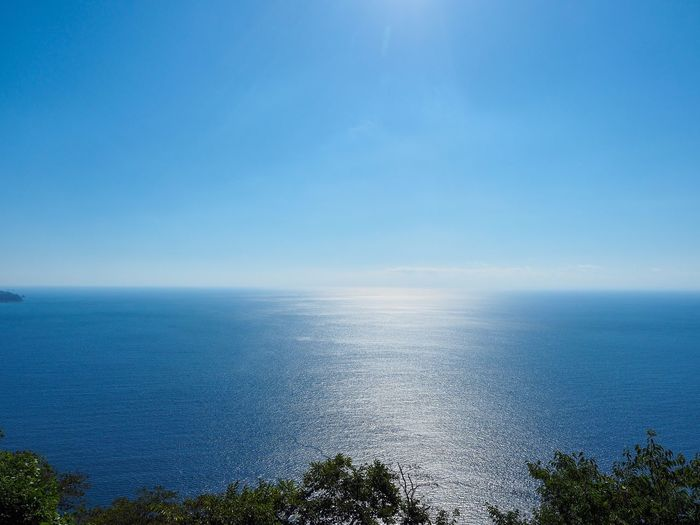 Peaceful blue. Simple Quiet Love No Edit/no Filter EyeEm Nature Lover Japan Shizuoka M.ZUIKO DIGITAL OM-D E-M5 MarkⅡ Olympus Sunlight Scenics No People Outdoors Blue Day Tranquil Scene Tranquility Beauty In Nature Nature Tree Horizon Over Water Sky Sea And Sky Sea
