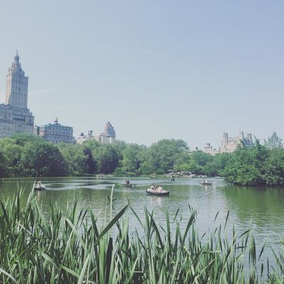 Water Architecture Lake View Day Nature Outdoors Sky building Cityscape central park Boats Rowing Building Exterior Built Structure Summer Summertime Spring Springtime afternoon Spring Day Blue Sky clouds Park