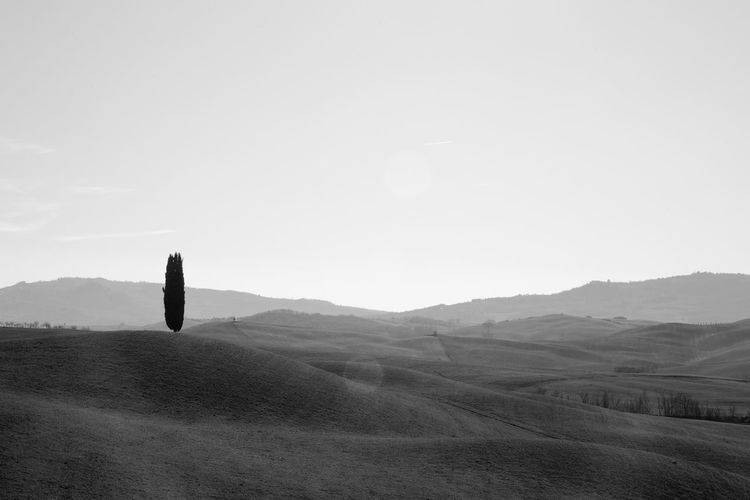 Pienza Pienza (toscana) Paesaggio Crete Senesi Siena Val D'orcia Cypresses Environment Sky Landscape Tranquility Mountain Tranquil Scene Beauty In Nature Scenics - Nature Copy Space Nature Land Non-urban Scene No People Clear Sky Day Idyllic Plant Mountain Range Remote Outdoors Rolling Landscape