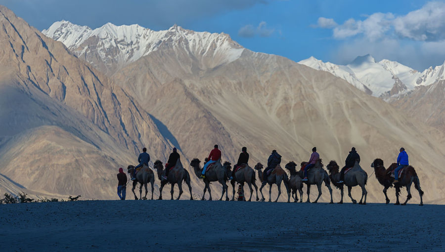 Group of people riding camels