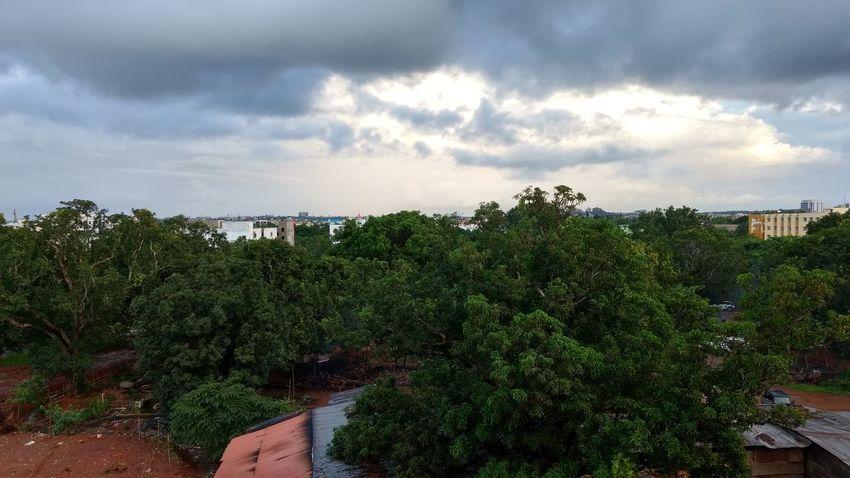 Tree Cloud - Sky No People . Beautiful rainy season.
