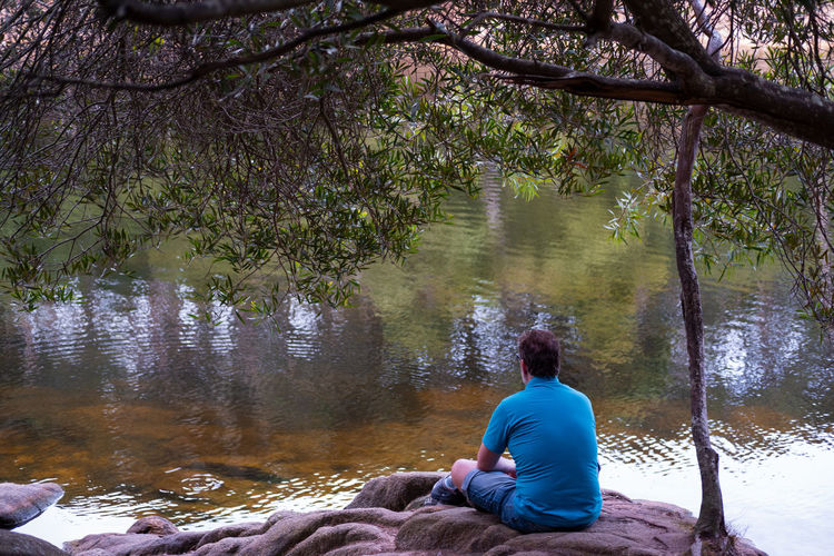 Rear view of man sitting by lake in forest