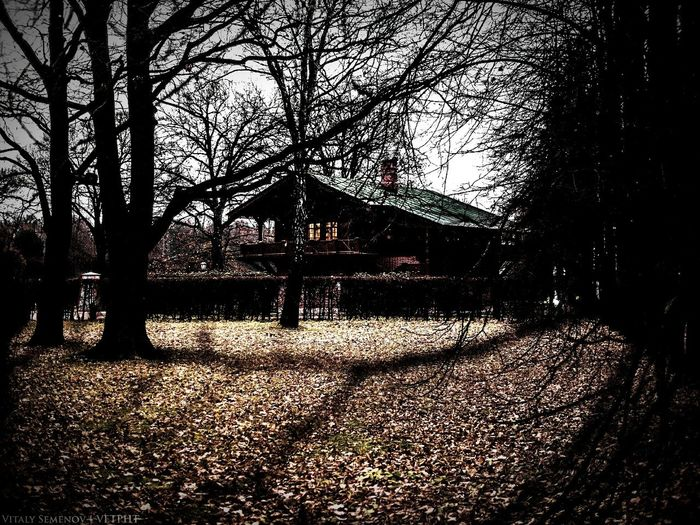 Forest Beautiful Nature House Dream Mind  . Horror Lifestyle Contryside Road Famous Place Memories Travel Photography Photography Popular Photos Contry Livin