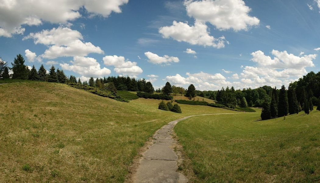 Beauty In Nature Bydgoszcz Myślęcinek Nature No People Outdoors Park Park - Man Made Space Sky Summer Summertime Tree Betterlandscapes Path Poland Poland Is Beautiful Way Parkways Parkweg ParkWalk Panoramic Photography Panoramic Landscape Landscape The Great Outdoors - 2017 EyeEm Awards