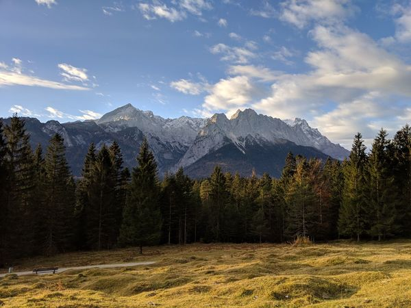 Zugspitze at a autumn morning Zugspitze Garmisch-partenkirchen Werdenfelser Land Tree Snow Cold Temperature Winter Pine Tree Pinaceae Sky Pine Woodland Mountain Peak Countryside
