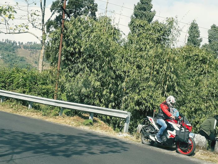 View of person riding motorcycle on road