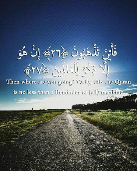 allahuakbar Beauty Of The Quran TruthIsBeauty 💯 Ramadan Kareem Truth Will Alhamdulilla SubhanAllah AllahuAkbar Poor Human Community Exposed Roots Week Humans Community Bird Clear Sky Flock Of Birds Flying Sky Animal Themes Grass Empty Road Countryside