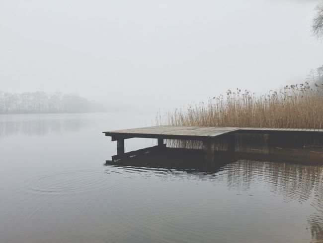 Lake Plattform Nature Winter Foggy Vintage Check This Out