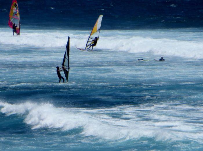 "Wind Surfers"""
