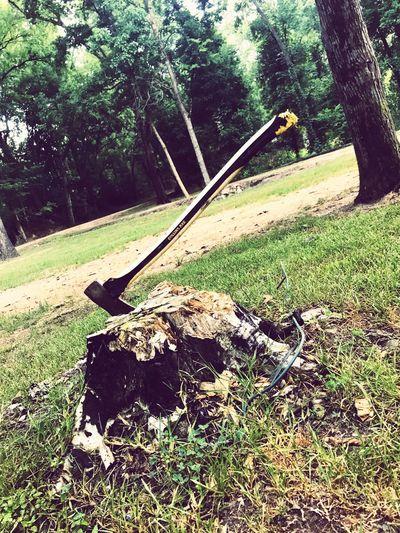 Stump Ax Plant Tree Day Nature No People Grass Land
