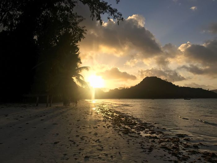 Seychelles Beauty In Nature Beach Seychelles Islands Sunset Beauty In Nature Beach Scenics Nature Sea Sand Water Tranquility Tranquil Scene Sky Sun Tree No People Outdoors Silhouette Day EyeEmNewHere